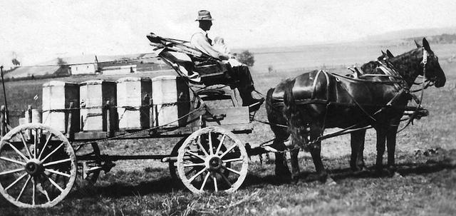 Wagon hauling cream